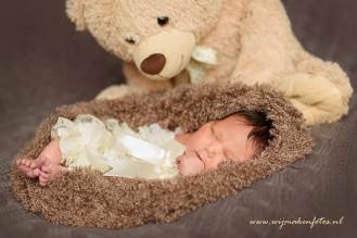 Teddybeer waakt